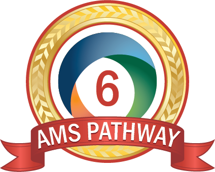 AMS Pathway Seal 6